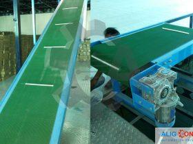 belt-conveyor-alig-conveyor-3
