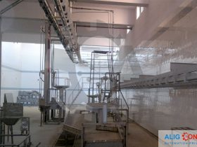 slaughte-conveyor-alig-conveyor
